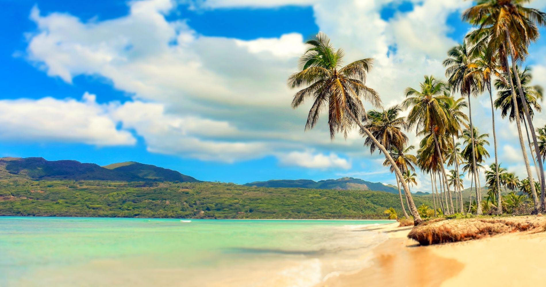 Wildlife, Beaches & Local Flavor of Puerto Plata for Two