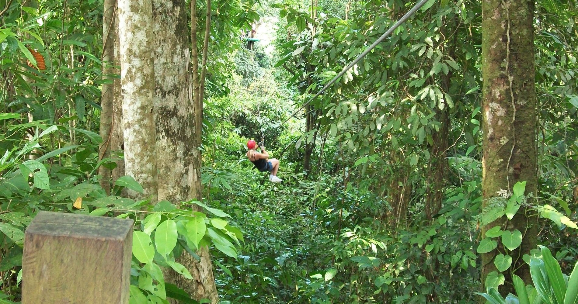 Zipline & Horseback Riding Adventure in Puerto Plata
