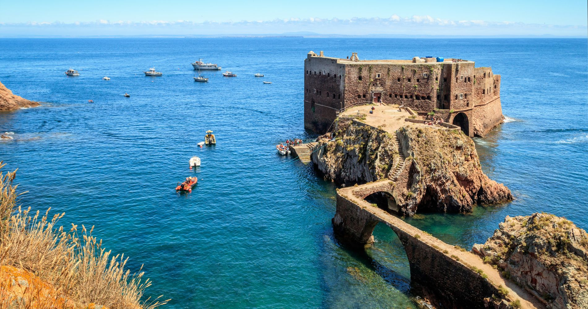 Berlengas Day Tour from Lisbon