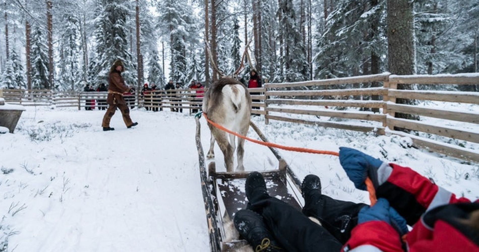 Snowmobile Safari to a Reindeer Farm for Two in Finland