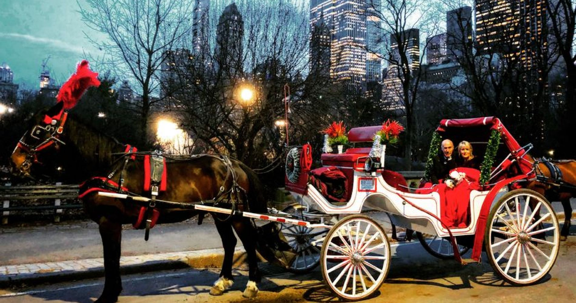 New York City Horse Carriage Ride for 4 people or Fewer