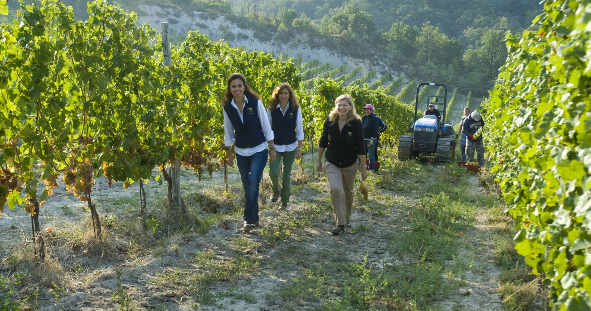 Discovering Gavi Wine at La Mesma Winery for Two