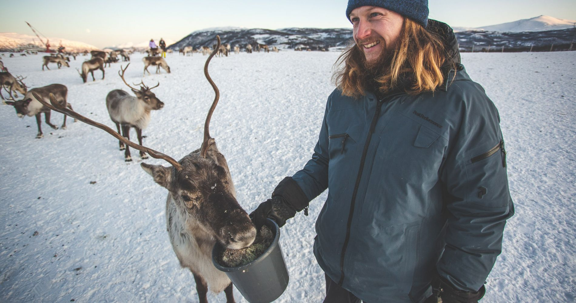 Sami Reindeer & Culture Experience for Two