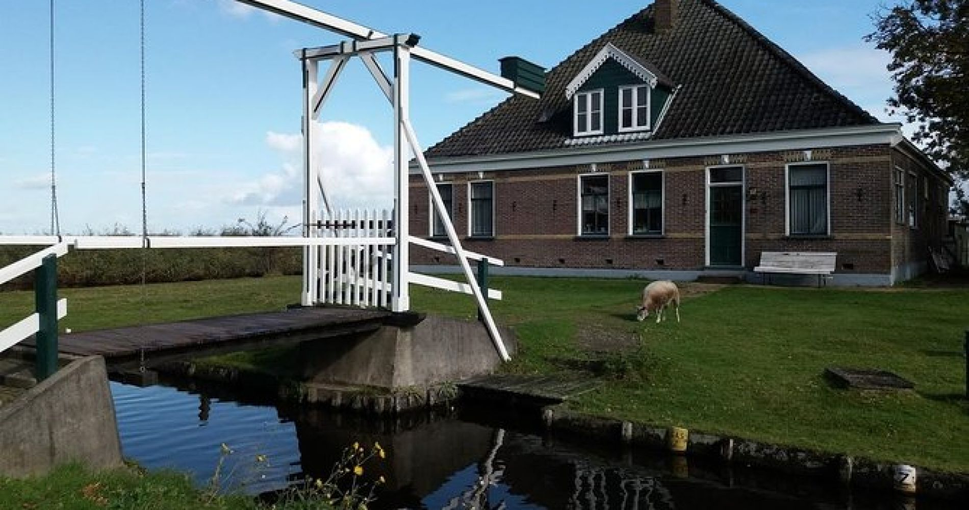 Netherlands Waterland Canoe Tour with Dinner from Amsterdam