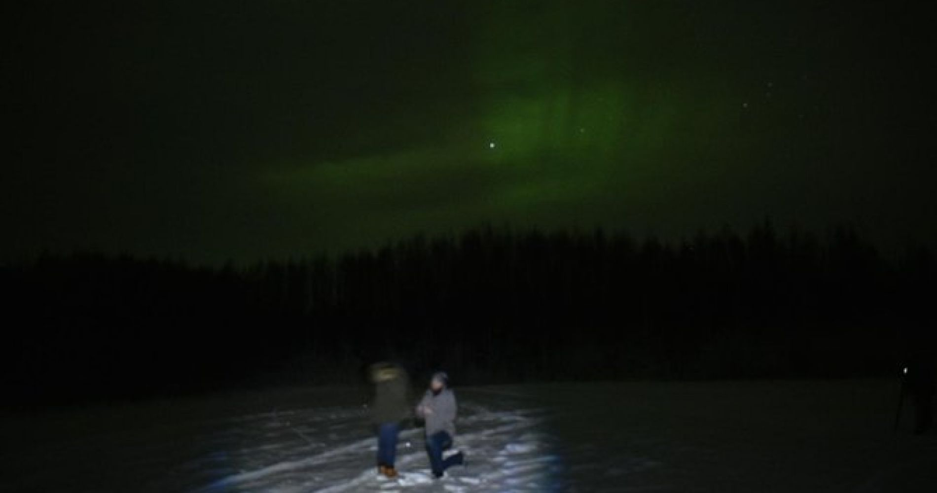 Northern Lights and Chena Hot Springs Tour from Fairbanks