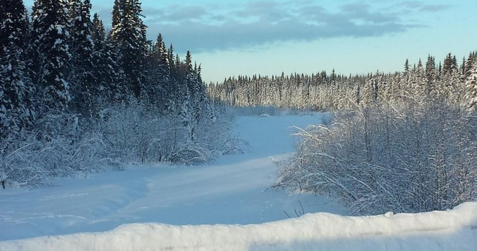 Snowshoe Tour at Chena Lakes