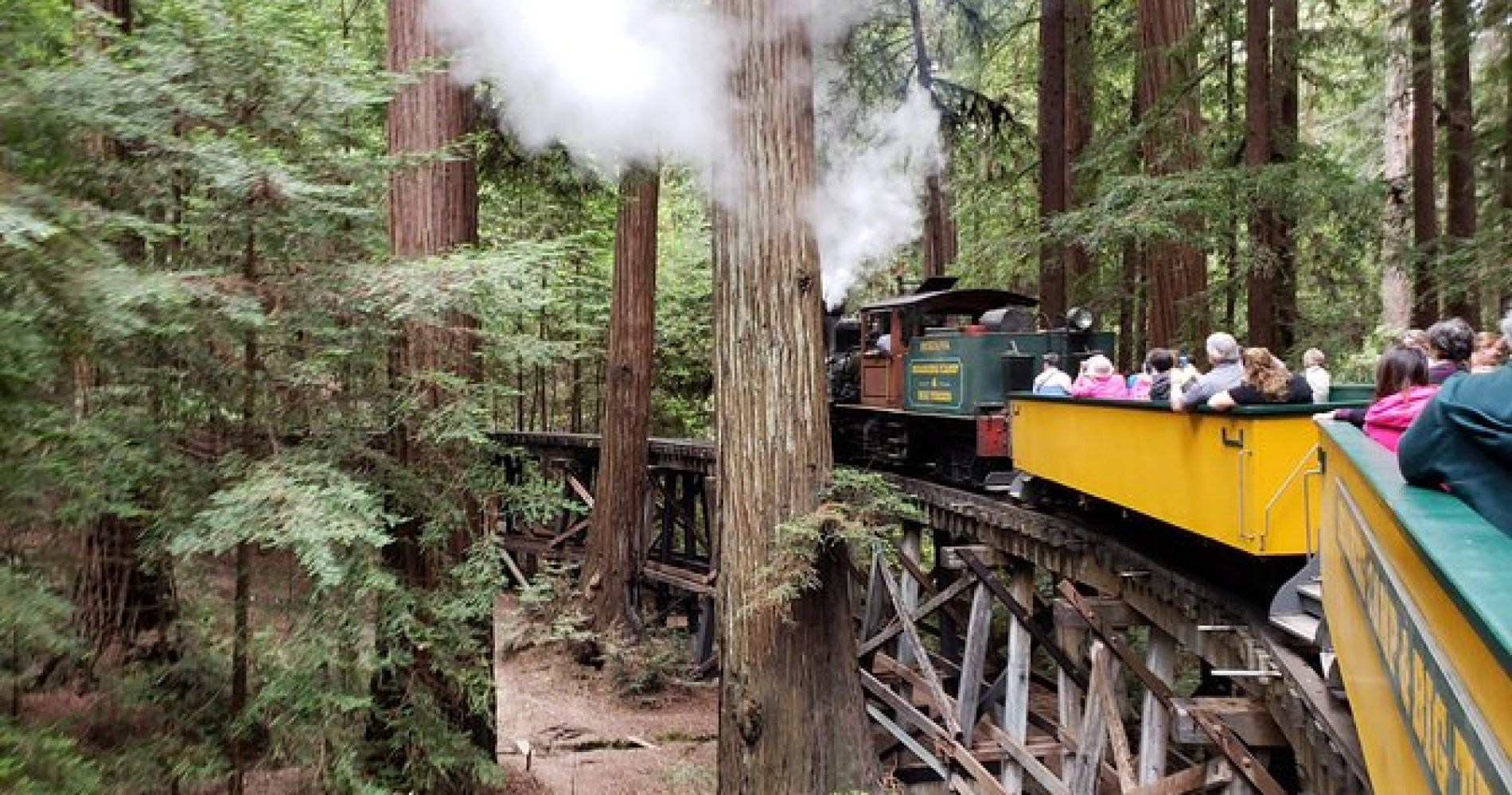 Santa Cruz Redwoods Roaring Camp Steam Train Ride in Felton
