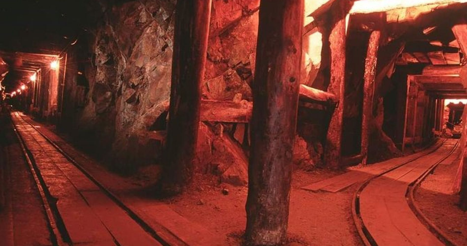 Gold Mine Tour with live show, gold panning and more