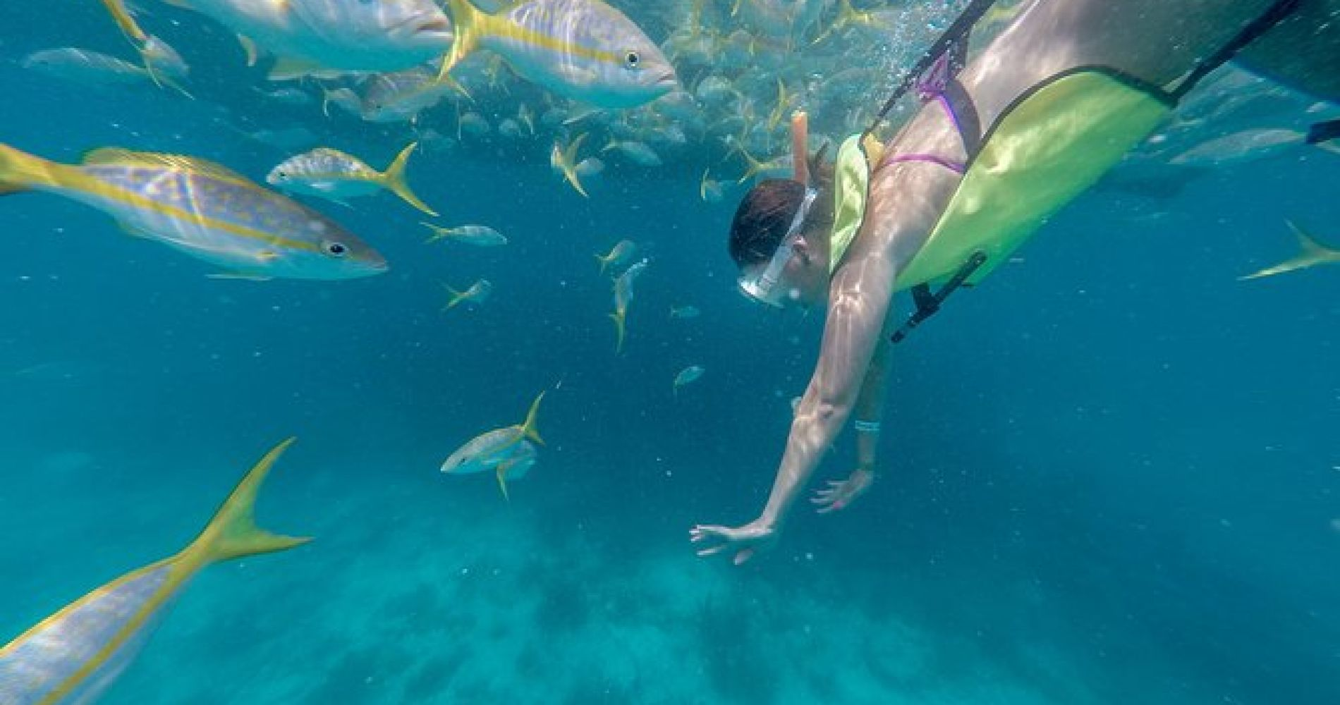 Key West Full-Day Catamaran Sailing and Water Sports Tour