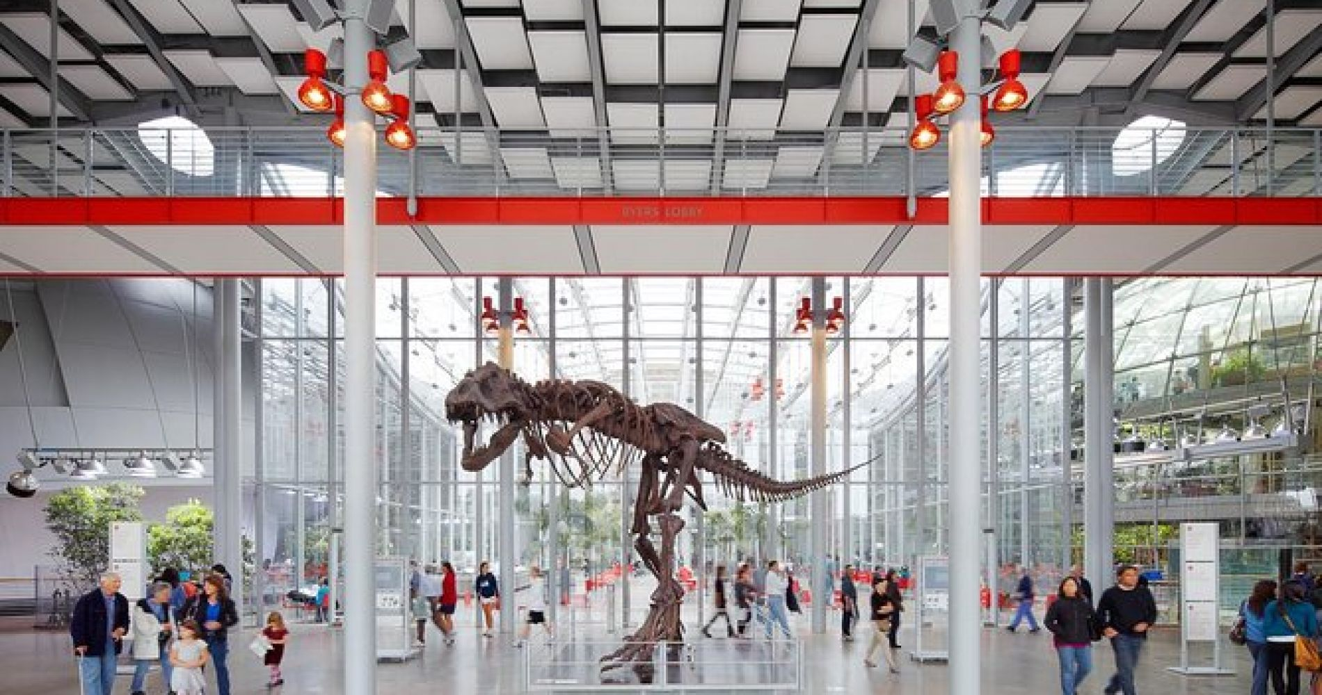 San Francisco's Best Museums including California Academy of Sciences