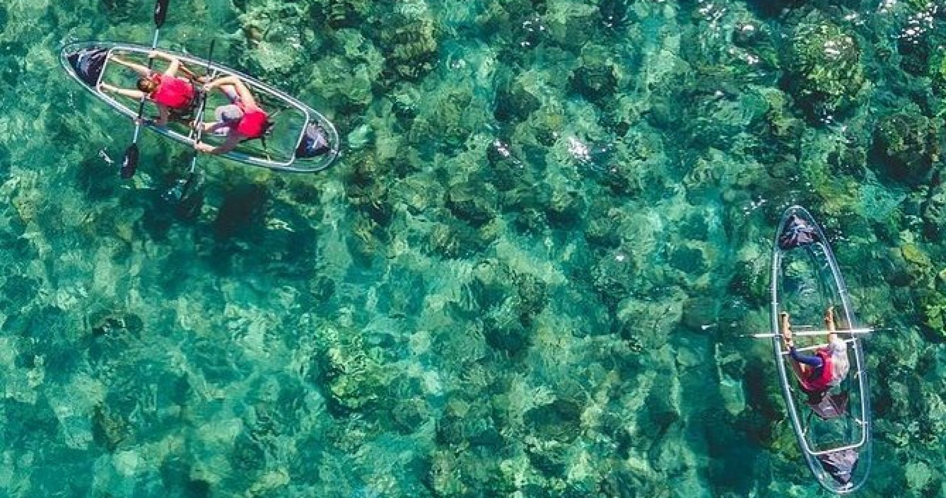 Clear Kayak and Snorkel Adventure from Kihei