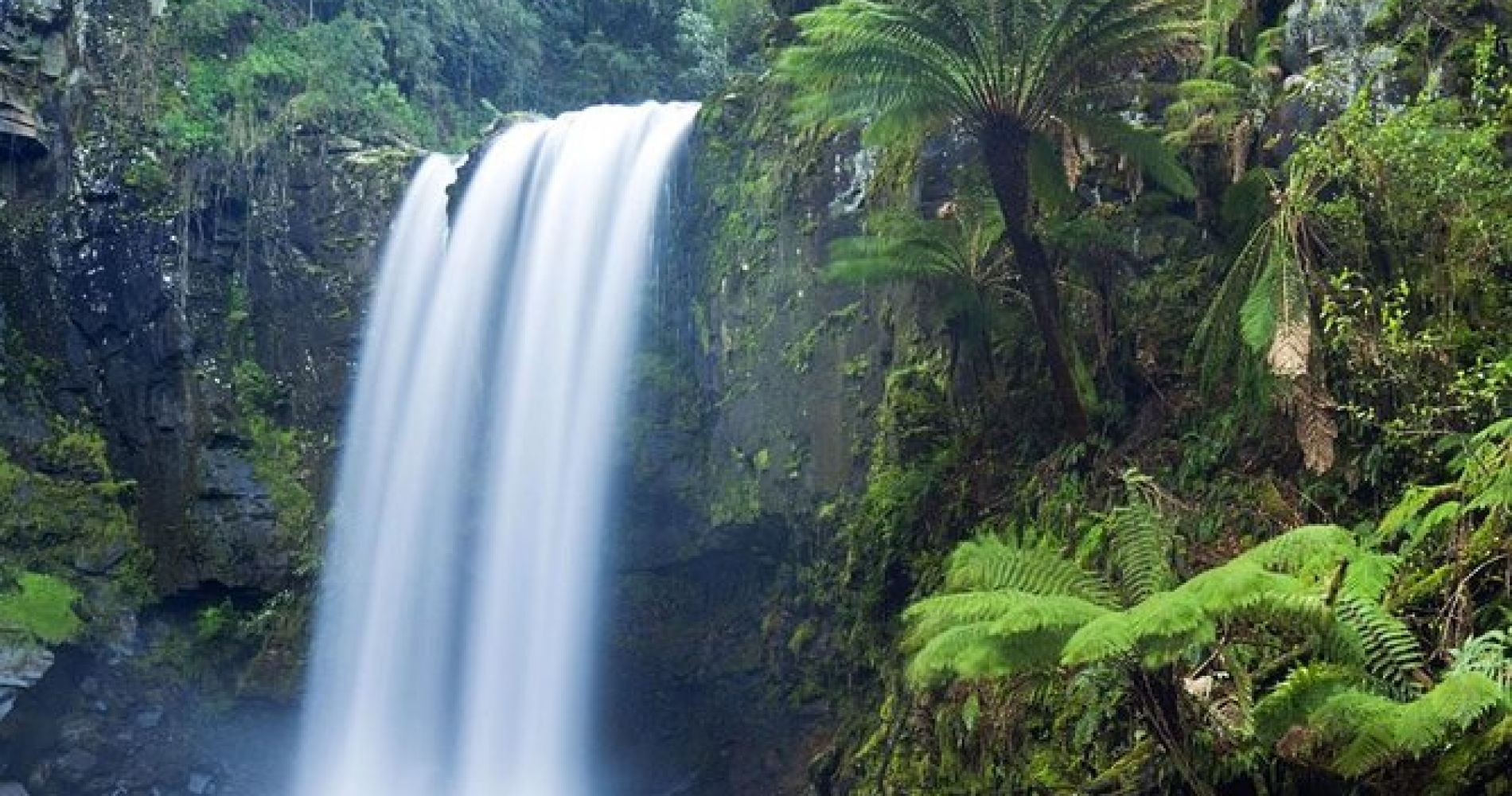 Waterfall Hike, Chocolate Tour, Rainforest Adventure,Voted Best Of Maui