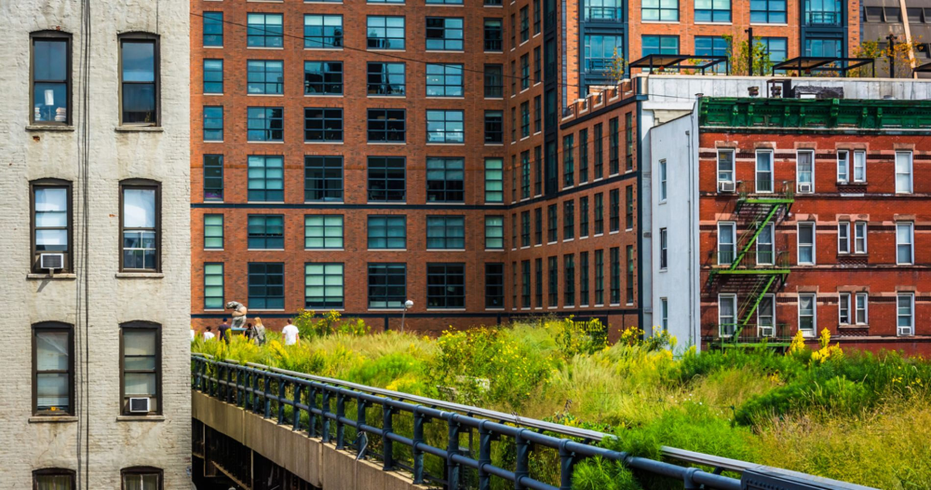 Take a Stroll on The High Line, New York