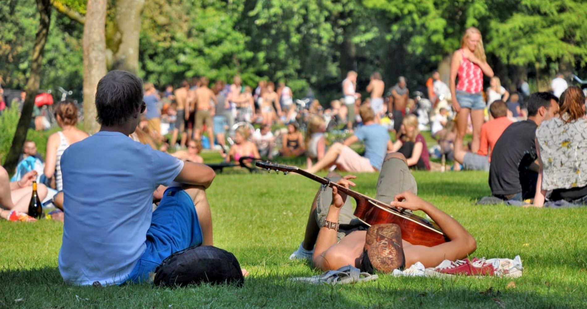 Catch a Concert at Vondelpark, Amsterdam