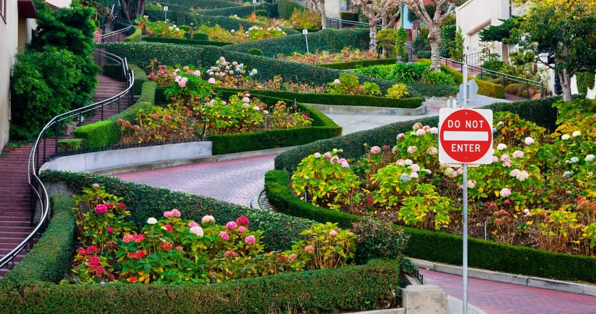 Take a Walk Down Lombard Street in San Francisco - The Most Crooked Street in the World
