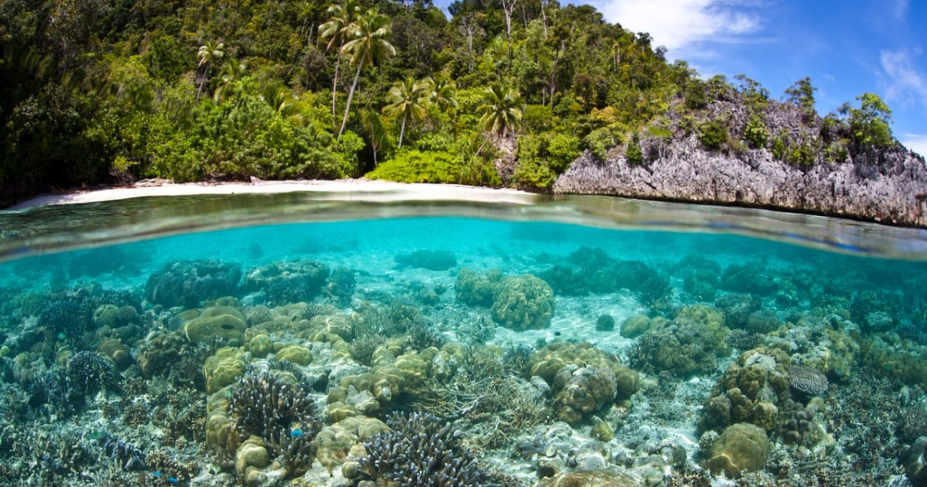 Snorkling the unexplored reefs of the Bainings, Papua New Guinea