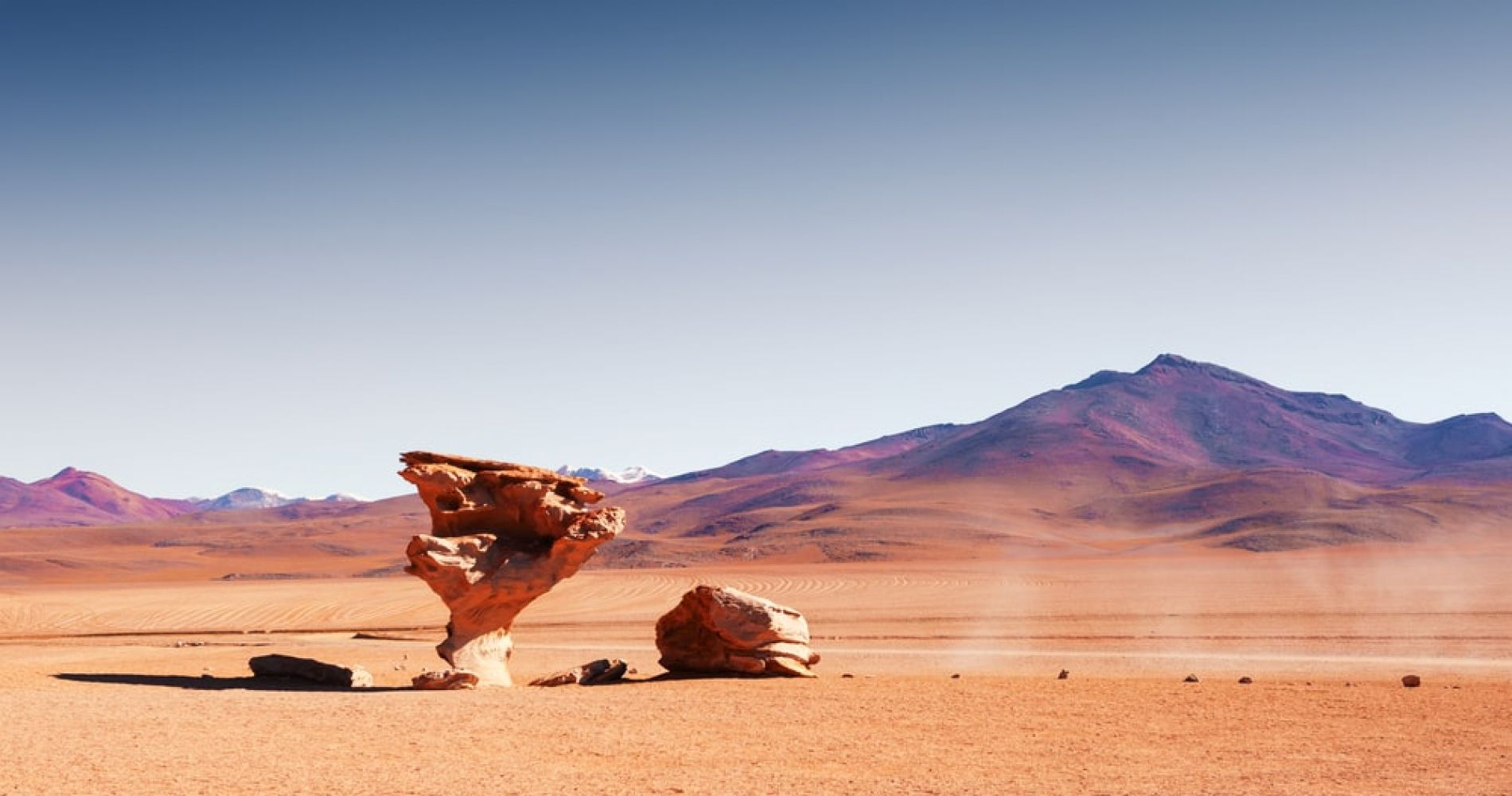 Take a photo with the Rock Tree in Bolivia