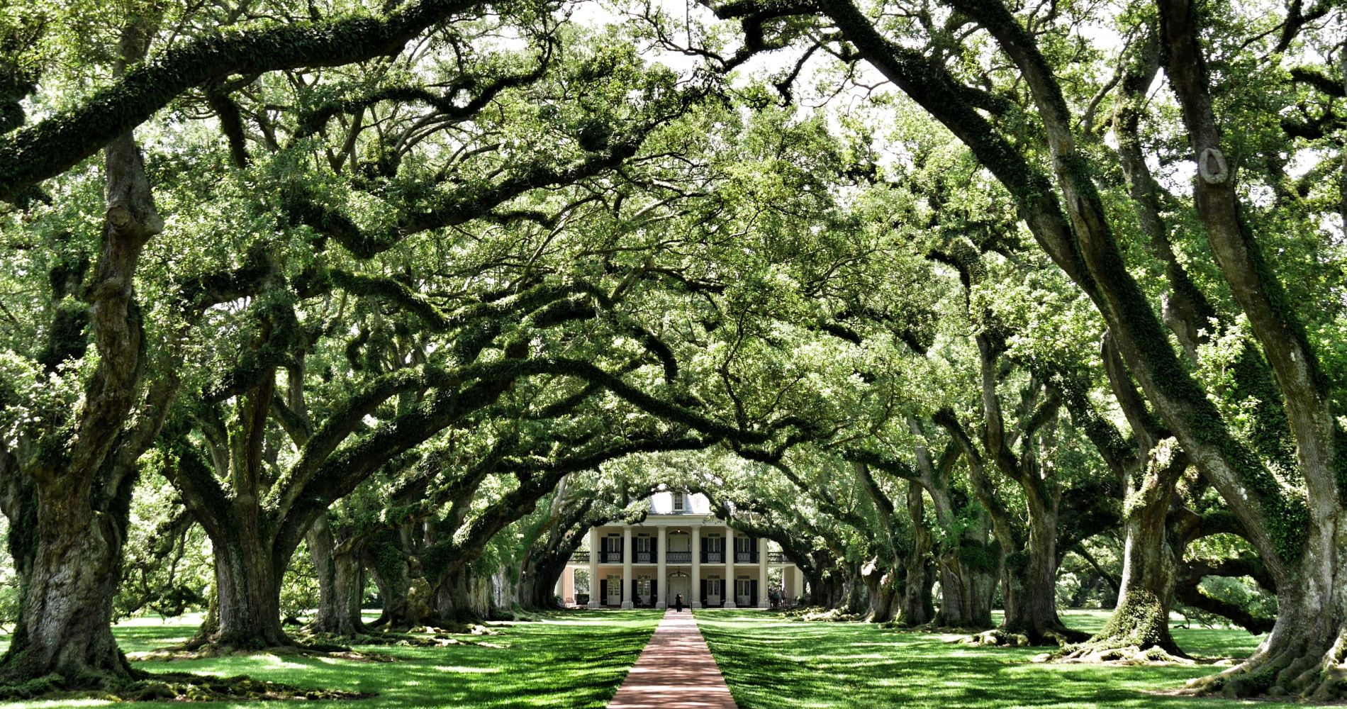 Oak Alley Plantation Louisiana with New Orleans Pass
