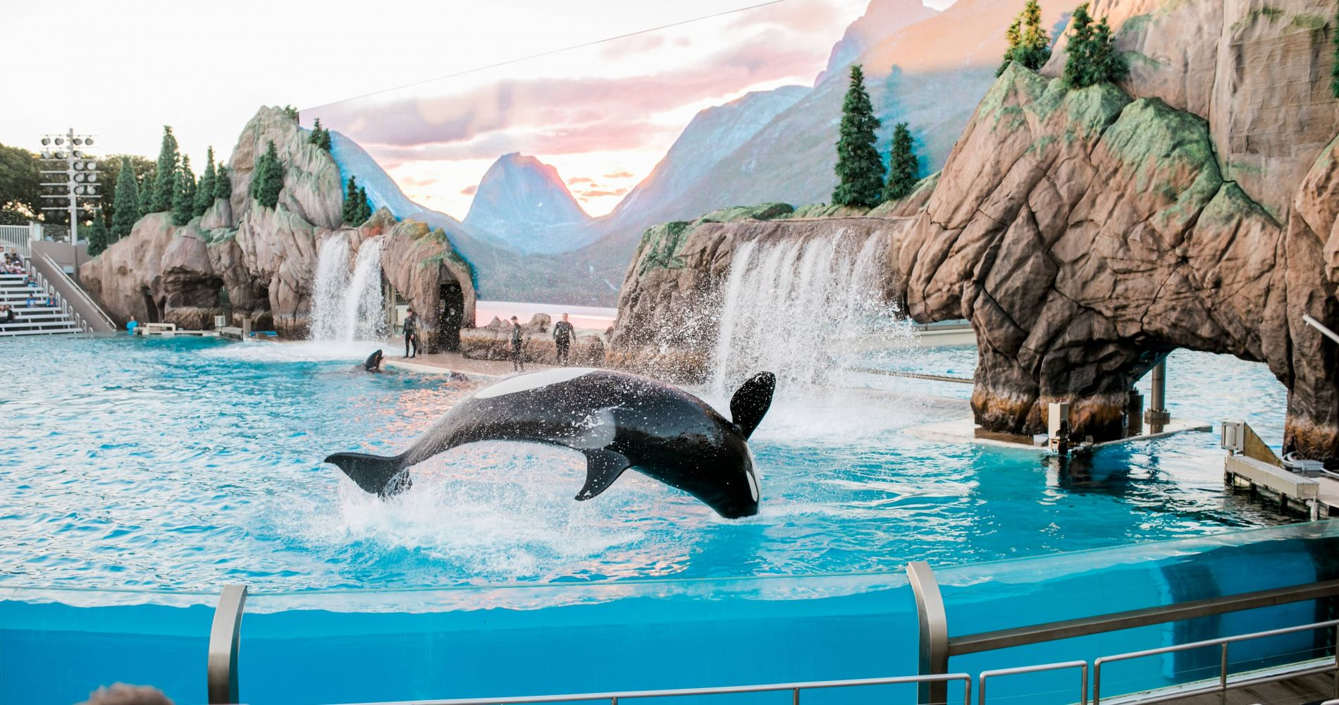 SeaWorld San Diego and other California attractions