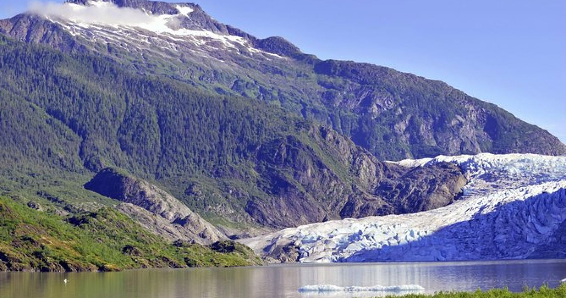 Mendenhall Glacier Shuttle Service, Roundtrip from Juneau