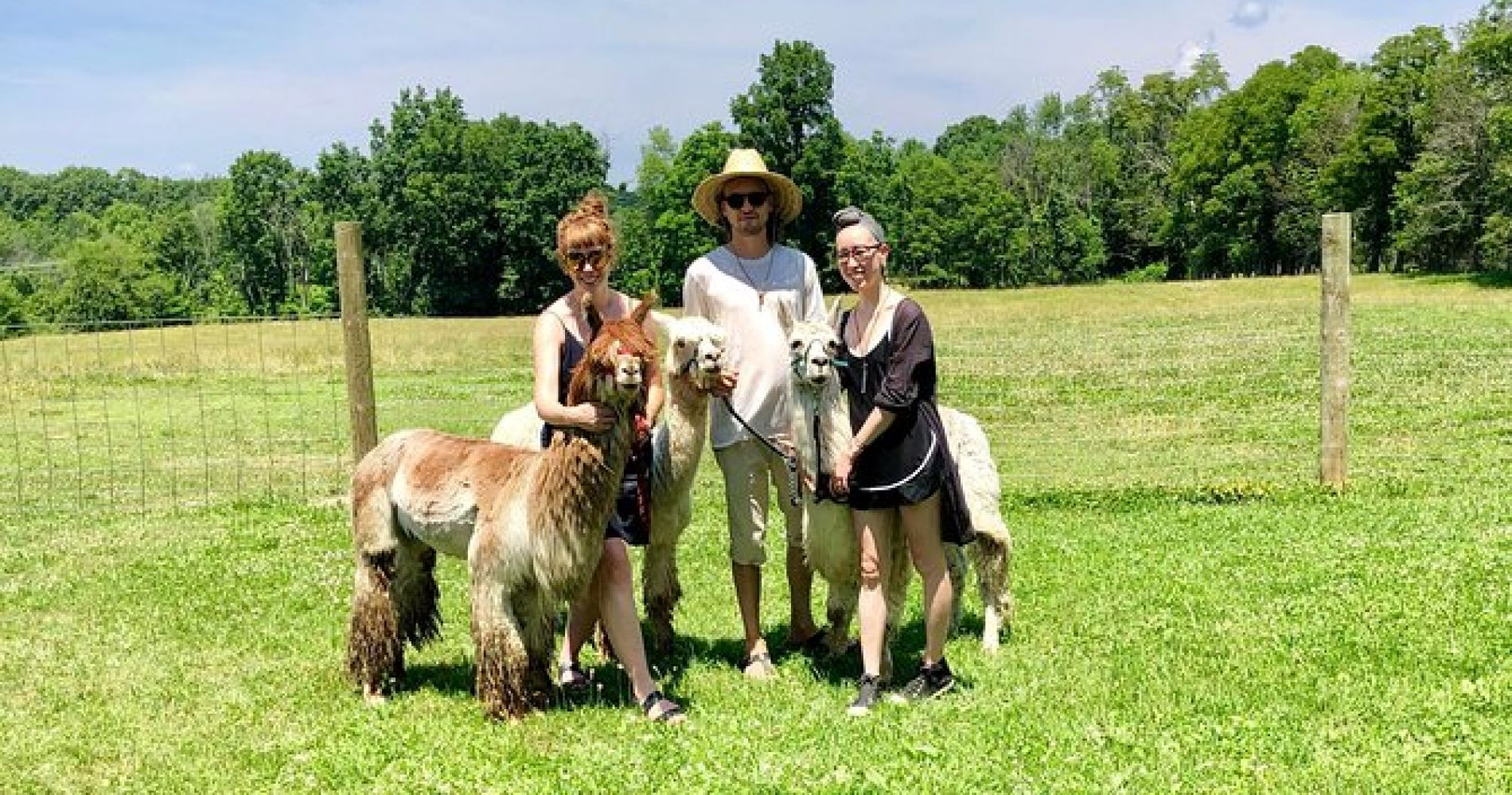 Llama/Alpaca Hike and Farm Tour