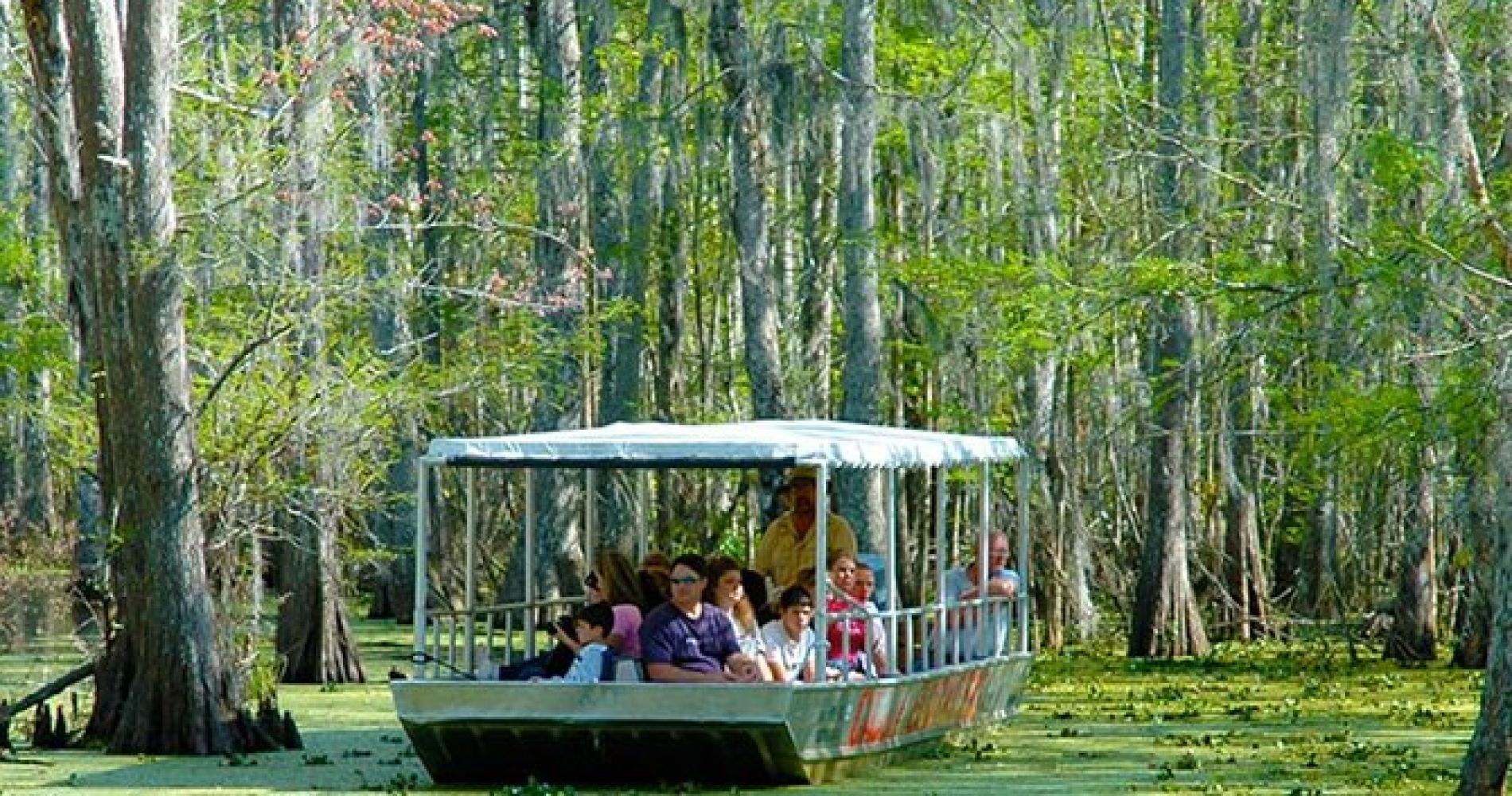New Orleans 2-Hour Swamp Tour by Boat with Guide