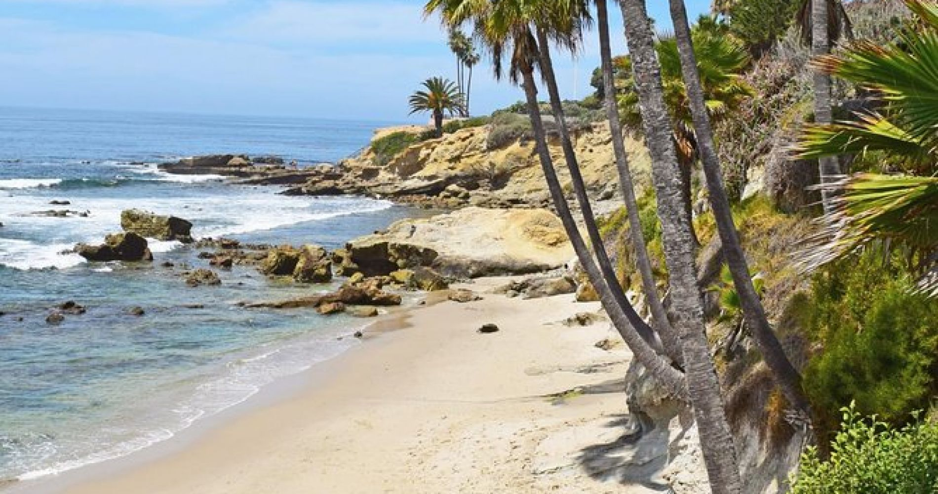 Whale-Watching and Orange County Beaches Tour from Anaheim