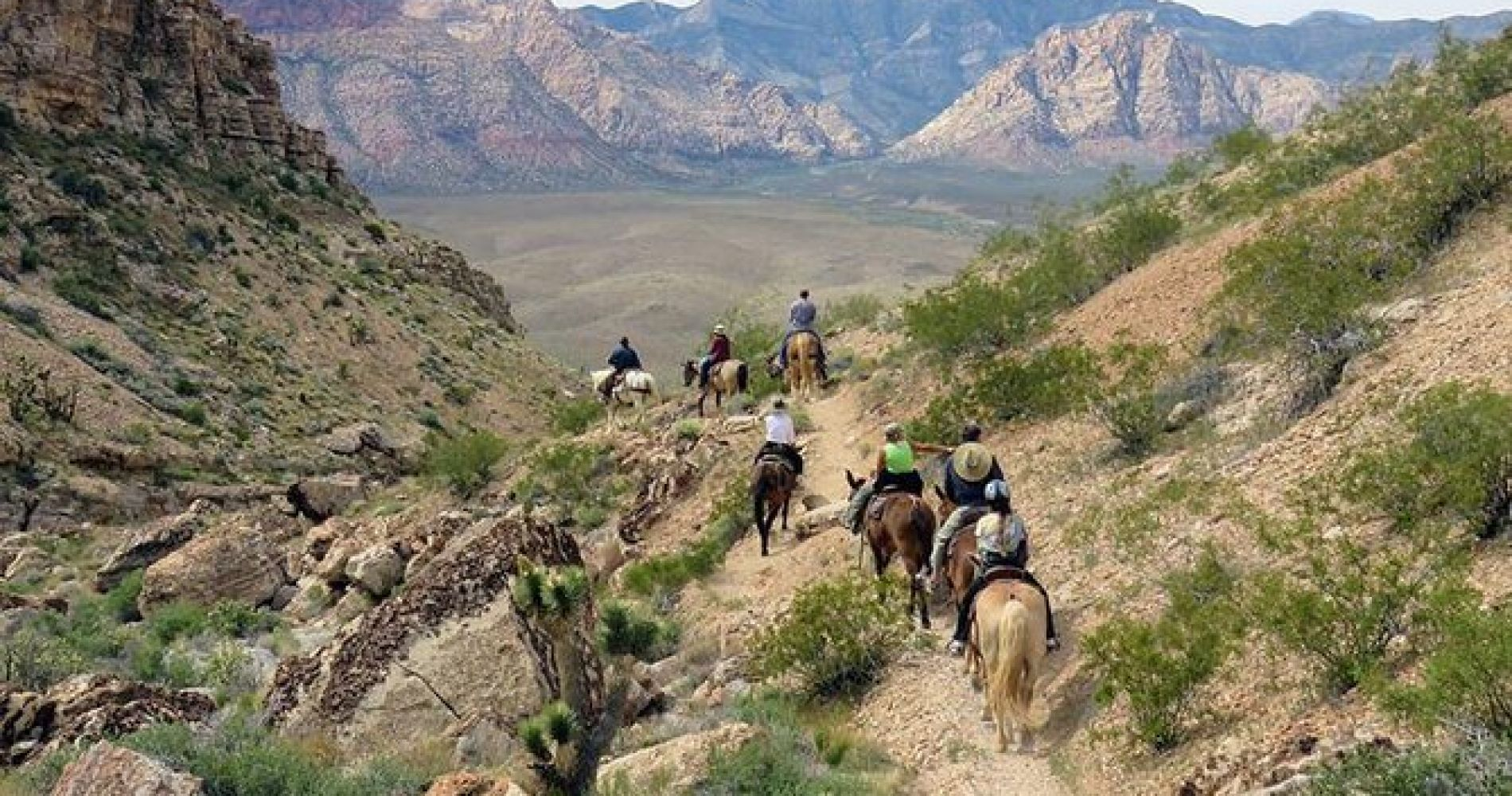 Red Rock Canyon 2-Hour Horseback Riding Adventure