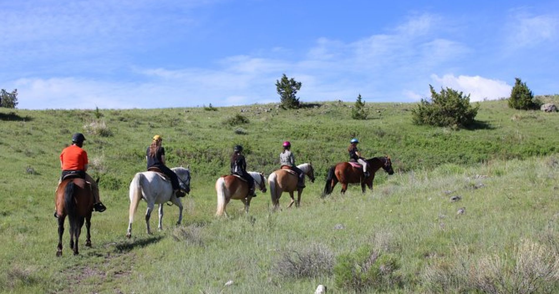 Erik's Ranch Property Trail Ride on the Countryside of Montana